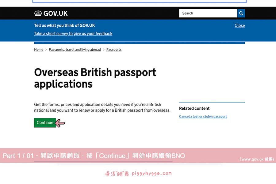 網上遞交申請BNO